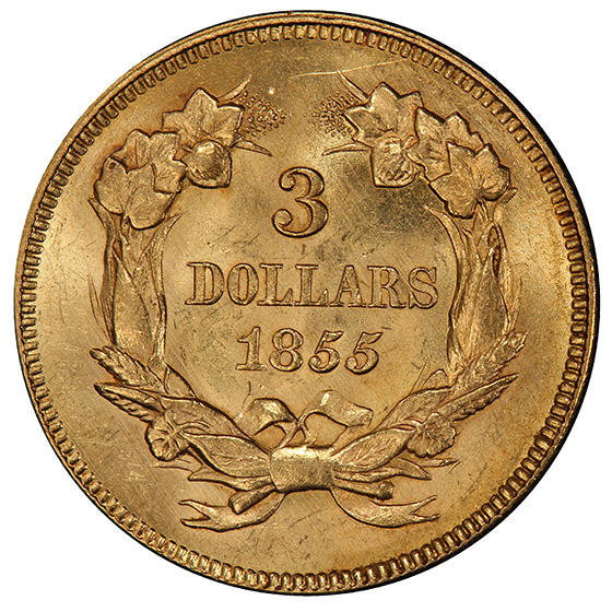 Picture of 1855 INDIAN PRINCESS $3 MS63