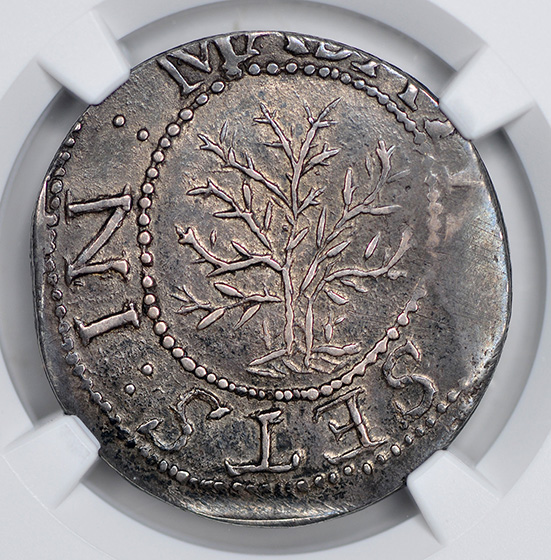Picture of 1652 OAK TREE SHILLING, ANDO VARIETY MS64