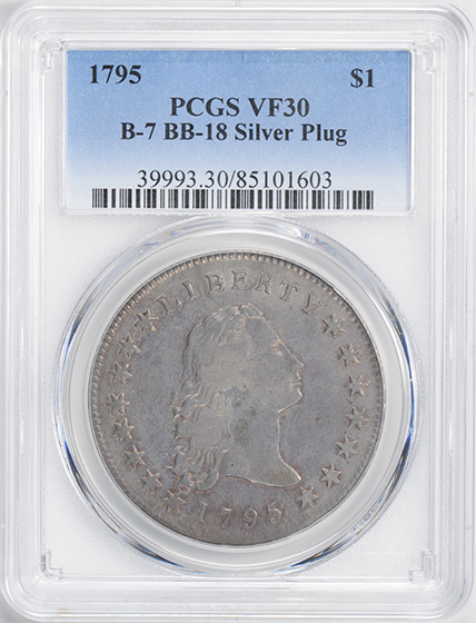 Picture of 1795 FLOWING HAIR $1, SILVER PLUG VF30