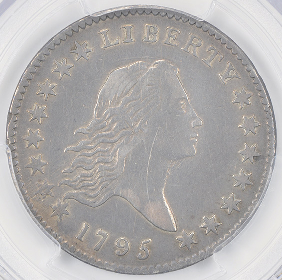 Picture of 1795 FLOWING HAIR 50C, 2 LEAVES VF30