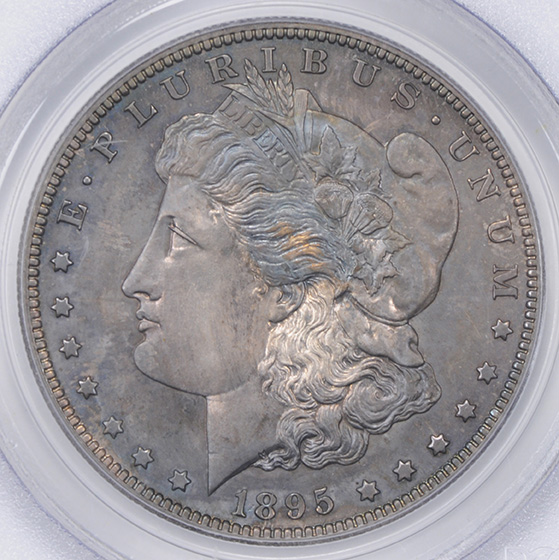 Picture of 1895 MORGAN S$1 PR65