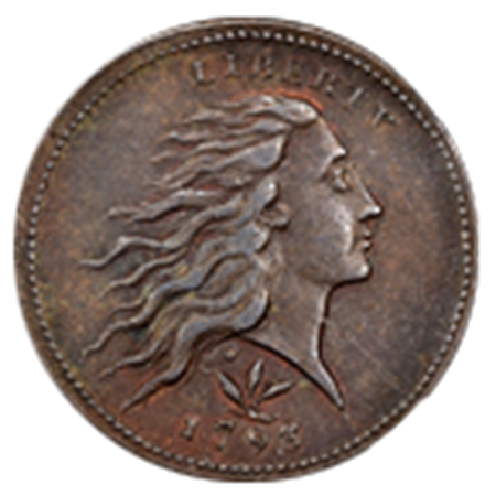 Picture for category Flowing Hair Large Cents
