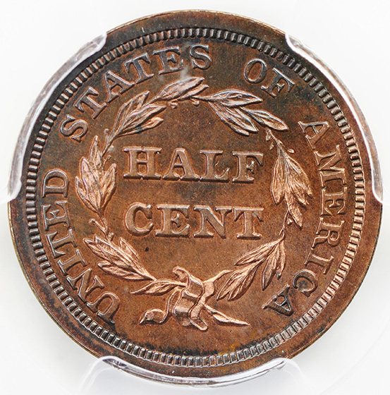 Picture of 1857 BRAIDED HAIR 1/2C PR66 Brown
