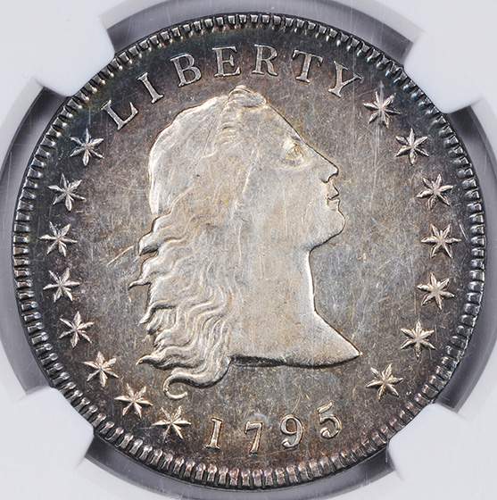 Picture of 1795 FLOWING HAIR $1, 3 LEAVES AU58