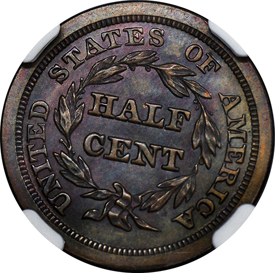 Picture of 1840 BRAIDED HAIR 1/2C, RESTRIKE PR66 Brown
